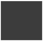 Lernponys Logo